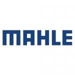 Фильтры Mahle